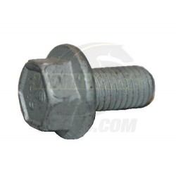 11570082  -  8.1l Exhaust Manifold Bolt (1 Per Side) M8 X 1.25